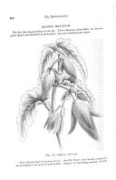 Página 330