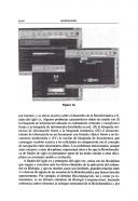 Página xxxvi
