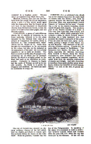 Página 396