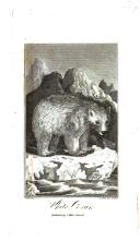 Página 554