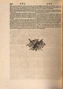 Página 896