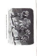 Página 272