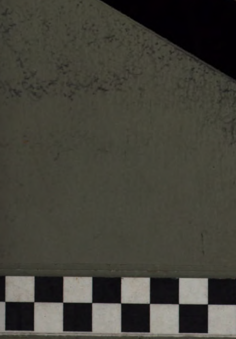 [merged small][merged small][ocr errors][graphic]